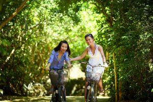 Découvrir l'Ile de Ré à vélo