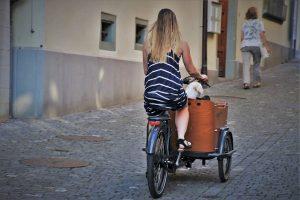 Faire du vélo pour découvrir la beauté de l'île Ré